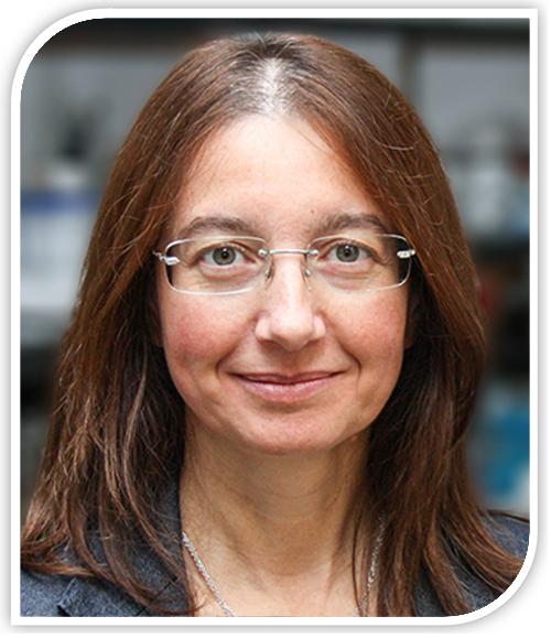Elena Comelli Targeting Microbiota 2019