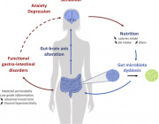 Role of microbiota-gut-brain axis dysfunctions induced by infections in the onset of anorexia nervosa