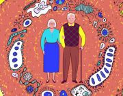 Gut Microbiome Implicated in Healthy Aging and Longevity